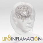 VIDEO_LIPOINFLAMACION_GRILLA